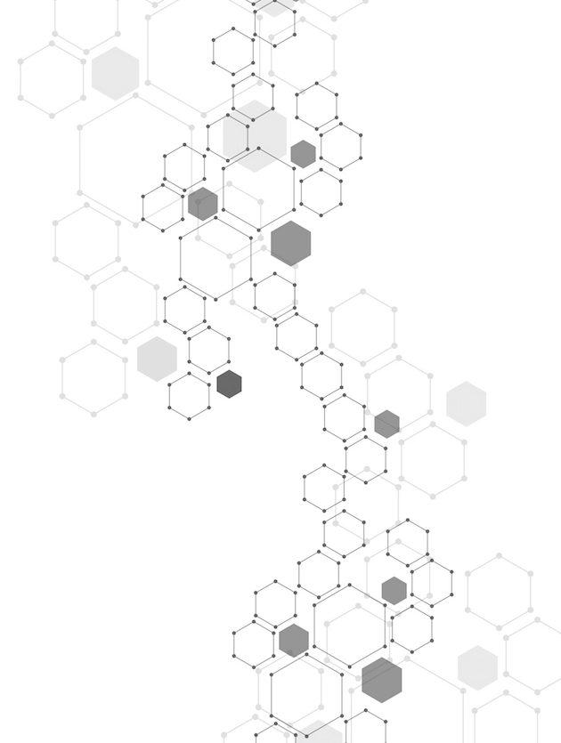 apiemus_elementas2
